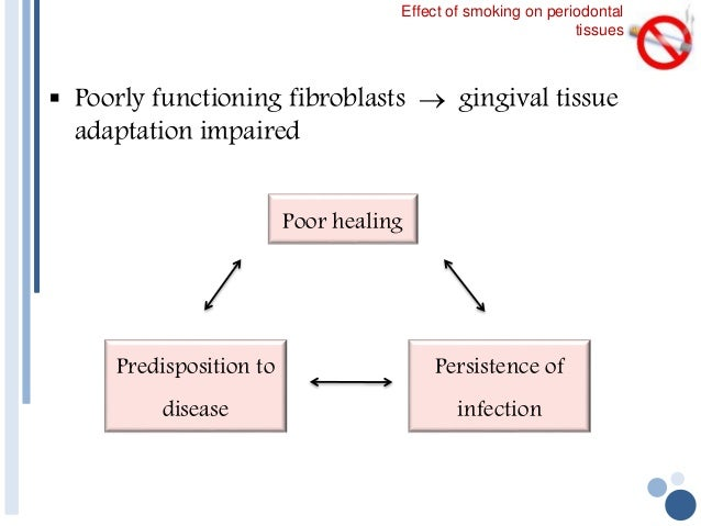 study of effect of smoking on the oral micro flora Study findings metastatic cancer cigar smoking causes cancer of the oral cavity, larynx health effects and trends bethesda, md retrieved october 21, 2010.