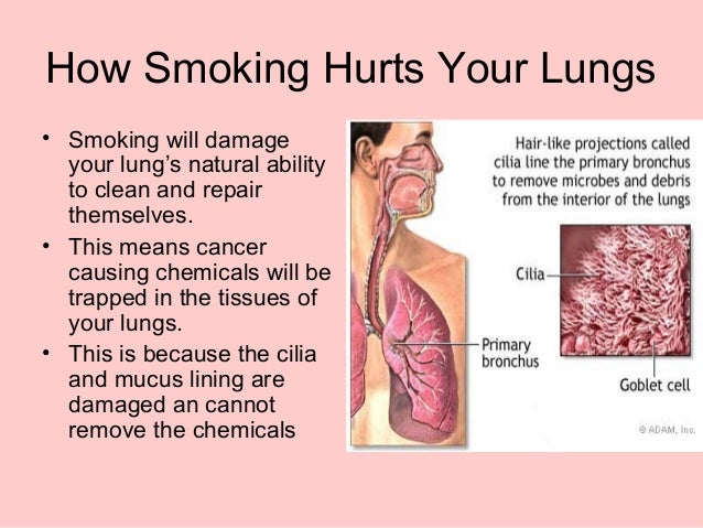 How cigarette smoking damages the heart and lungs