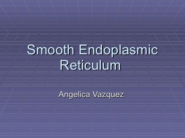Smooth Endoplasmic Reticulum  Angelica Vazquez