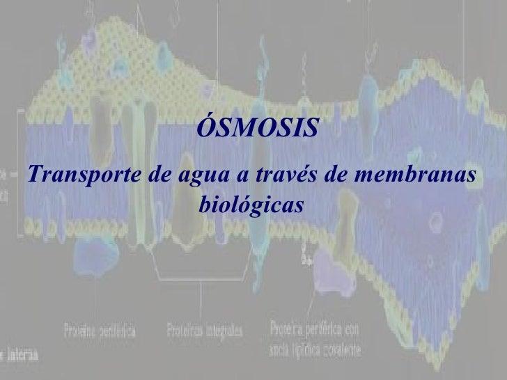 Transporte de agua a través de membranas biológicas ÓSMOSIS