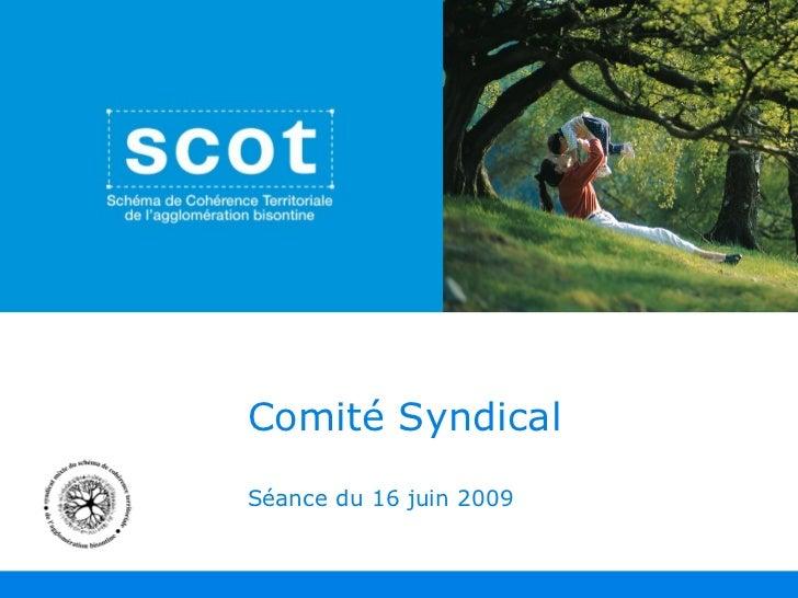Comité Syndical Séance du 16 juin 2009