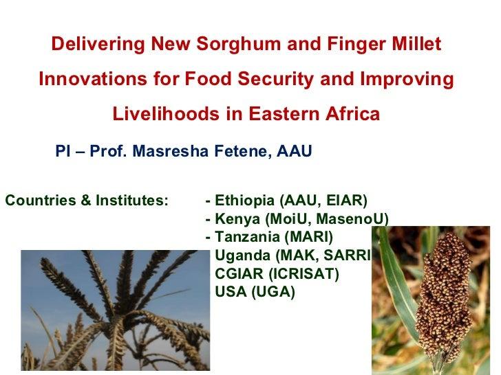 Delivering New Sorghum and Finger Millet Innovations for Food Security and Improving Livelihoods in Eastern Africa PI – Pr...