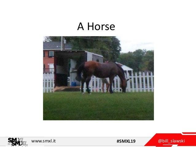 @bill_slawskiwww.smxl.it #SMXL19 A Horse .