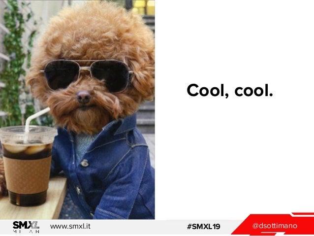@dsottimanowww.smxl.it #SMXL19 Cool, cool.