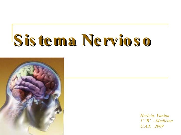 Sistema Nervioso Herlein, Vanina 1º 'B'  - Medicina U.A.I.  2009