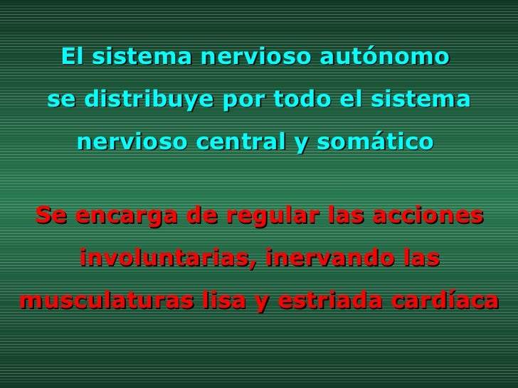 El sistema nervioso autónomo  se distribuye por todo el sistema nervioso central y somático  Se encarga de regular las acc...