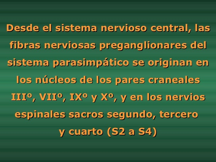Desde el sistema nervioso central, las fibras nerviosas preganglionares del sistema parasimpático se originan en los núcle...