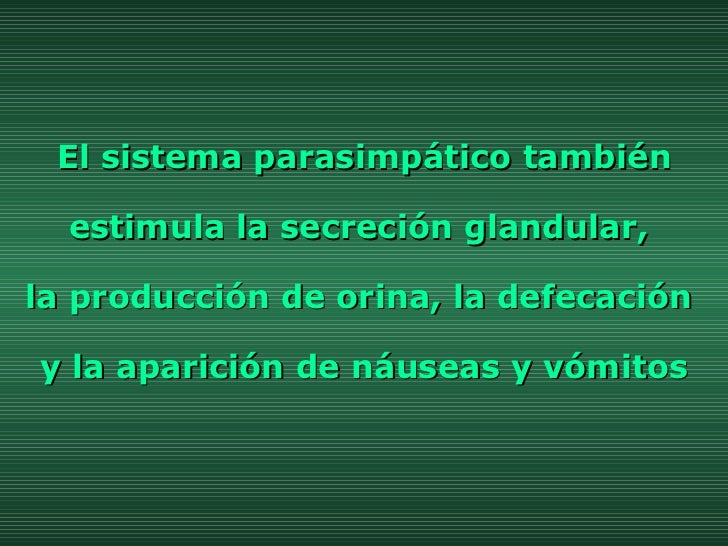 El sistema parasimpático también estimula la secreción glandular,  la producción de orina, la defecación  y la aparición d...