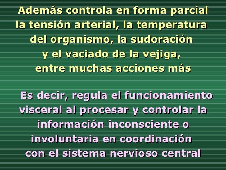Además controla en forma parcial  la tensión arterial, la temperatura  del organismo, la sudoración  y el vaciado de la ve...