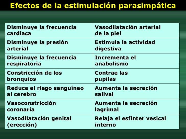 Efectos de la estimulación parasimpática Relaja el esfínter vesical interno Vasodilatación genital (erección) Aumenta la s...