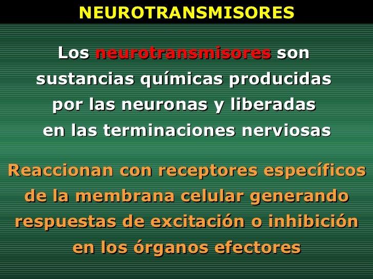 Los  neurotransmisores  son  sustancias químicas producidas  por las neuronas y liberadas  en las terminaciones nerviosas ...