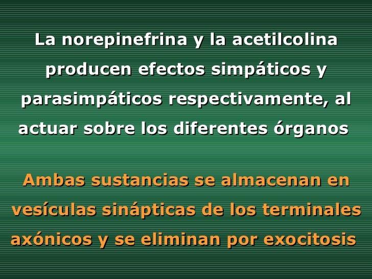 La norepinefrina y la acetilcolina producen efectos simpáticos y parasimpáticos respectivamente, al actuar sobre los difer...