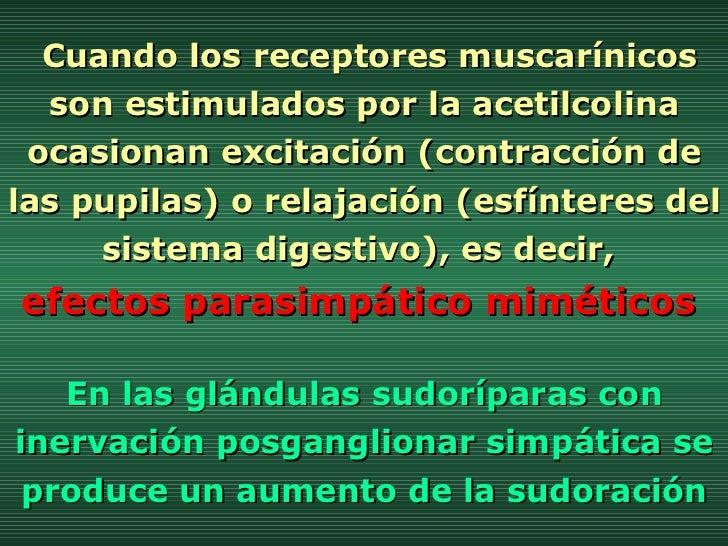Cuando los receptores muscarínicos son estimulados por la acetilcolina ocasionan excitación (contracción de las pupilas) o...