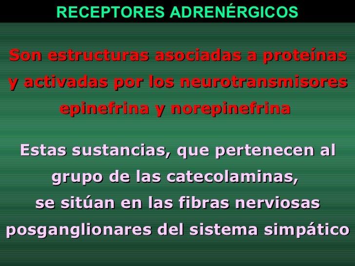 Son estructuras asociadas a proteínas y activadas por los neurotransmisores epinefrina y norepinefrina  Estas sustancias, ...