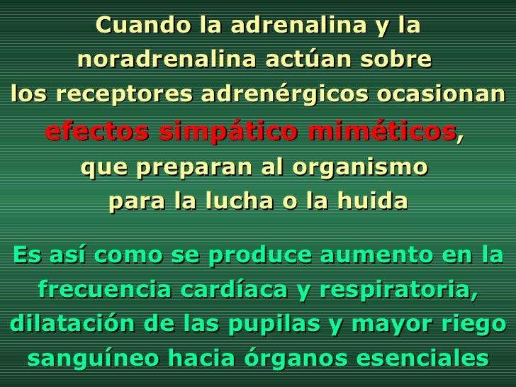 Cuando la adrenalina y la noradrenalina actúan sobre  los receptores adrenérgicos ocasionan  efectos simpático miméticos ,...