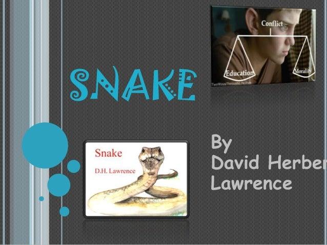 SNAKE  By David Herber Lawrence
