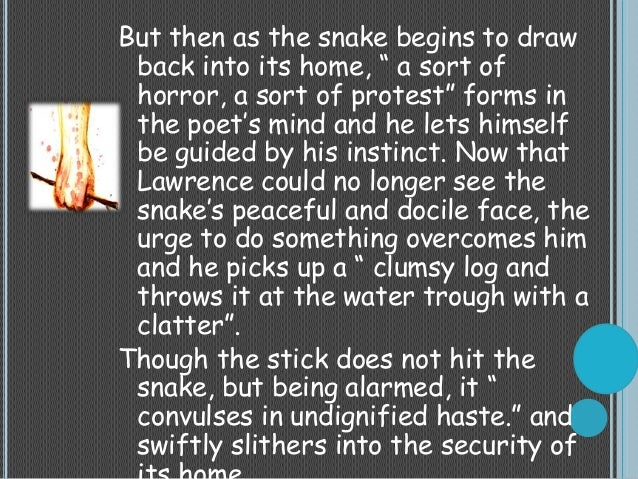 Dh lawrence snake