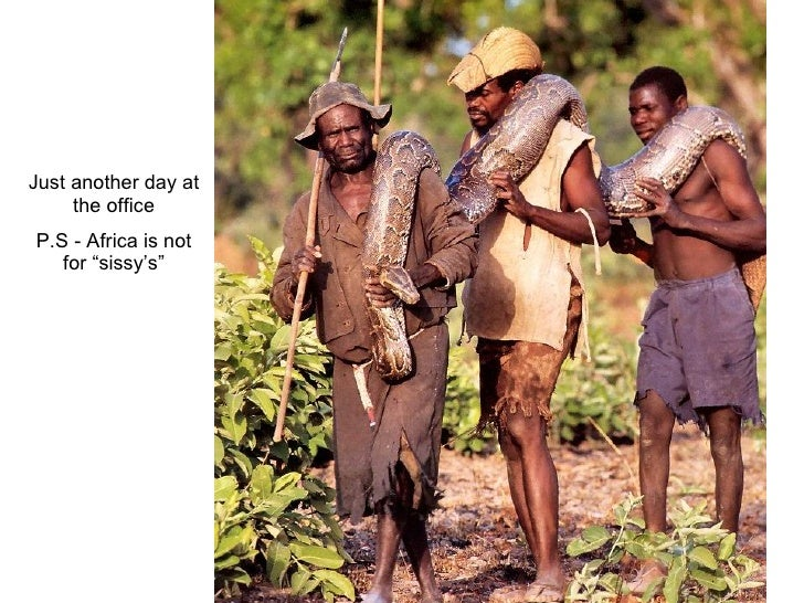 """Just another day at the office P.S - Africa is not for """"sissy's"""""""