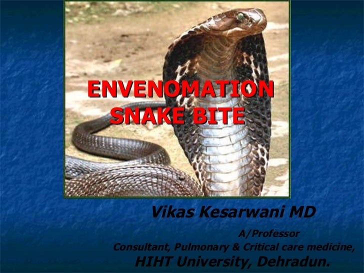 ENVENOMATION SNAKE BITE  Vikas Kesarwani MD A/Professor  Consultant, Pulmonary & Critical care medicine, HIHT University, ...