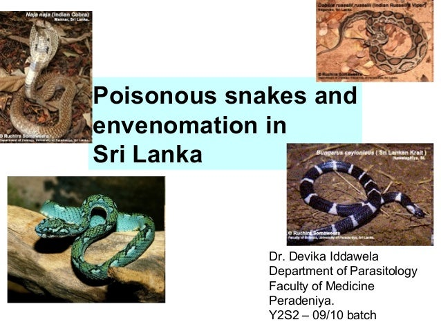 Poisonous snakes andenvenomation inSri LankaDr. Devika IddawelaDepartment of ParasitologyFaculty of MedicinePeradeniya.Y2S...