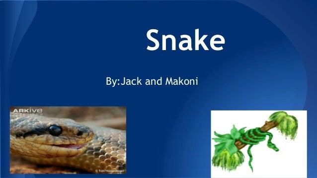 Snake By:Jack and Makoni