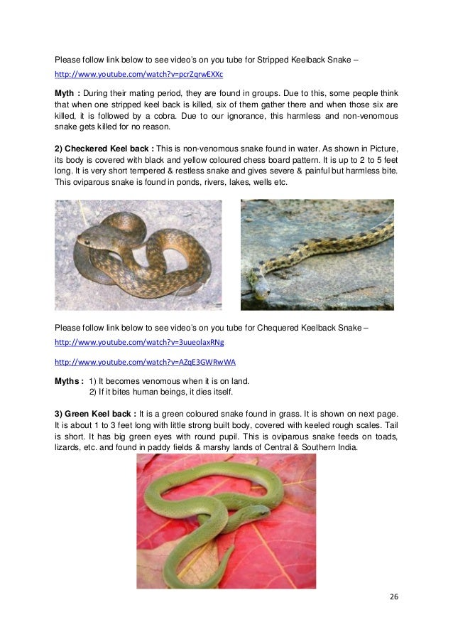 Snakes Myths & Facts in English by Santosh Takale