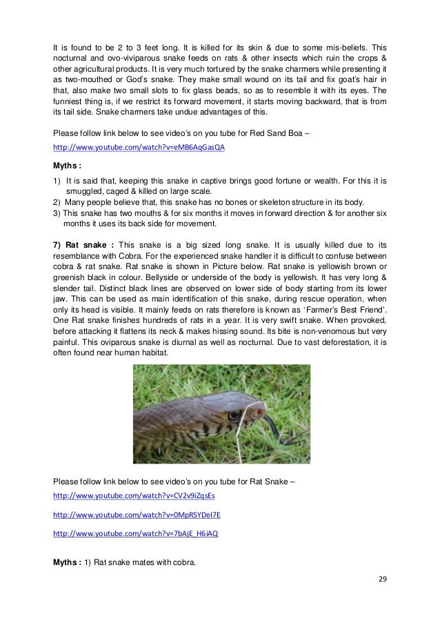 29 It is found to be 2 to 3 feet long. It is killed for its skin & due to some mis-beliefs. This nocturnal and ovo-vivipar...