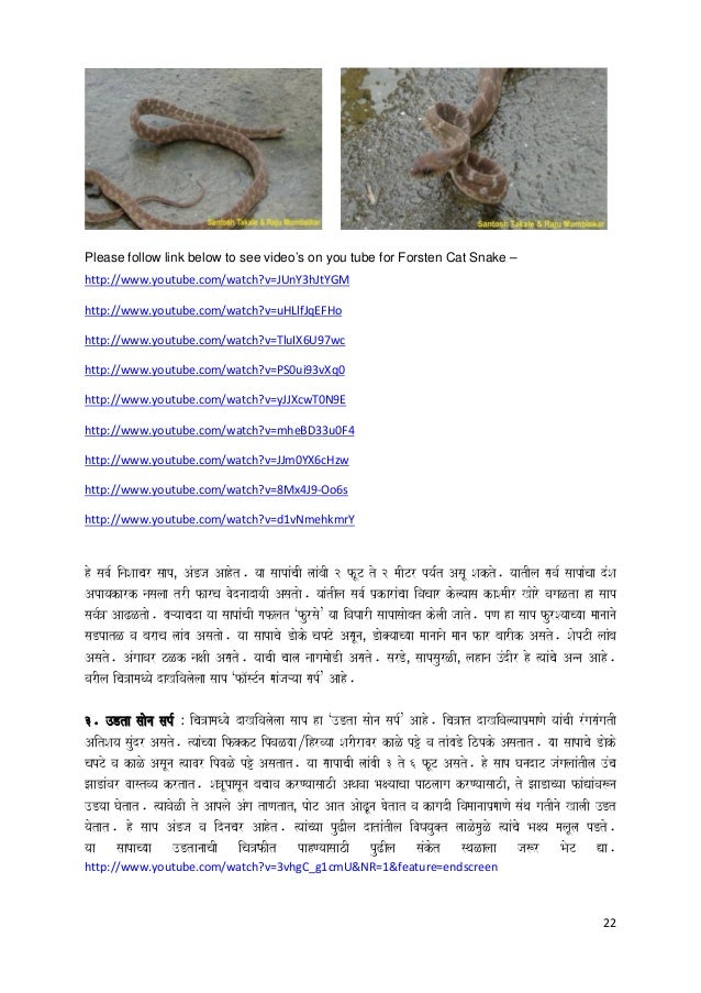 22 Please follow link below to see video's on you tube for Forsten Cat Snake – http://www.youtube.com/watch?v=JUnY3hJtYGM ...
