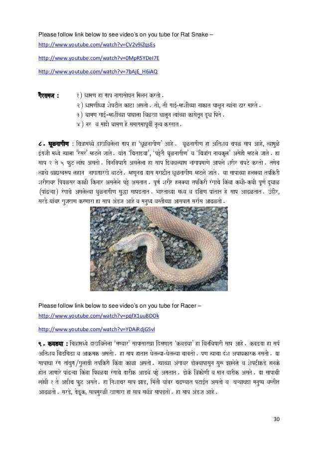 30 Please follow link below to see video's on you tube for Rat Snake – http://www.youtube.com/watch?v=CV2v9iZqsEs http://w...