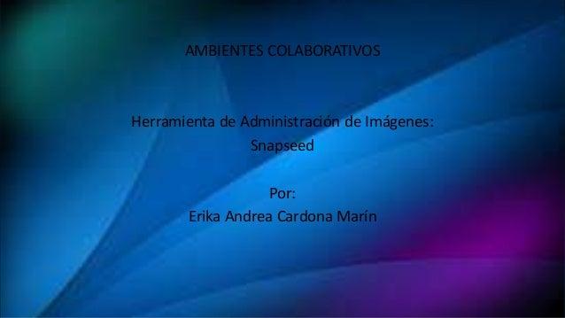 AMBIENTES COLABORATIVOS Herramienta de Administración de Imágenes: Snapseed Por: Erika Andrea Cardona Marín