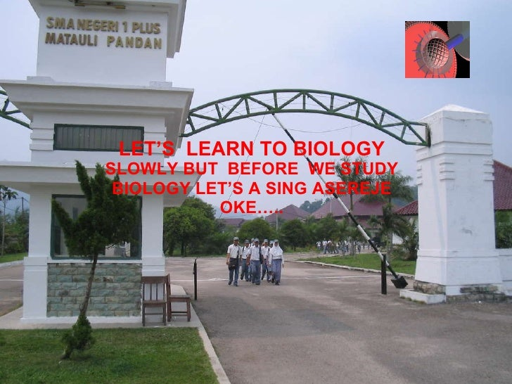 LET'S  LEARN TO BIOLOGY SLOWLY BUT  BEFORE  WE STUDY BIOLOGY LET'S A SING ASEREJE OKE…..