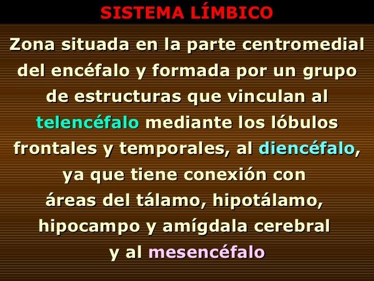 SISTEMA LÍMBICO Zona situada en la parte centromedial del encéfalo y formada por un grupo de estructuras que vinculan al  ...