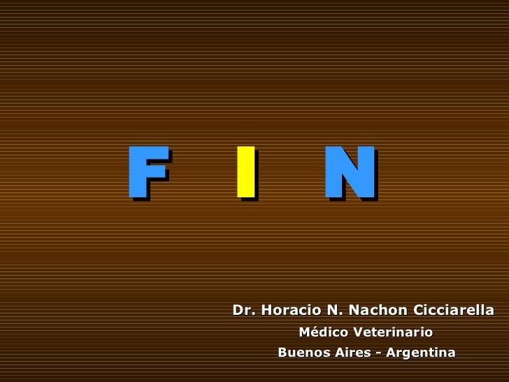 F   I  N Dr. Horacio N. Nachon Cicciarella   Médico Veterinario   Buenos Aires - Argentina