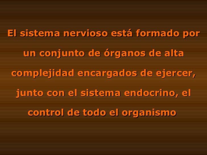 SISTEMA NERVIOSO CENTRAL Slide 2