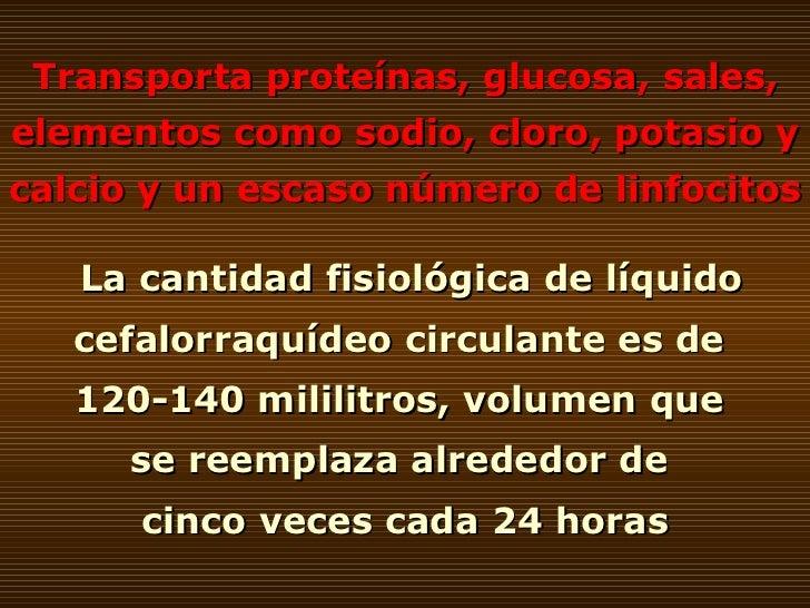 Transporta proteínas, glucosa, sales, elementos como sodio, cloro, potasio y calcio y un escaso número de linfocitos La ca...