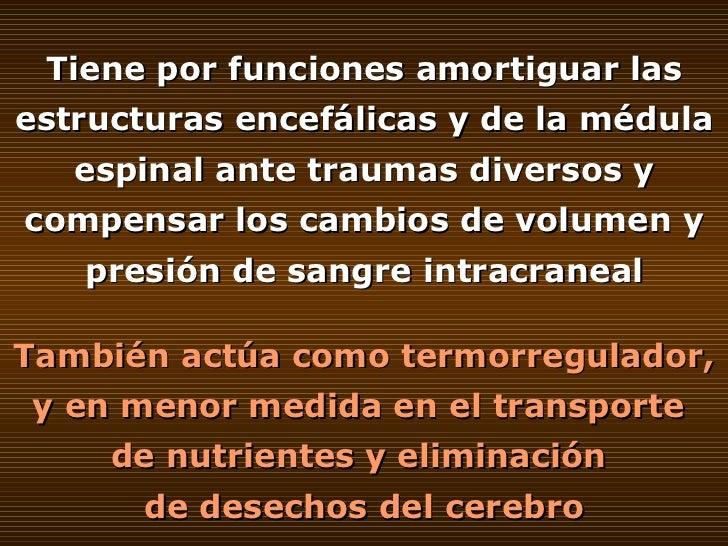 Tiene por funciones amortiguar las estructuras encefálicas y de la médula espinal ante traumas diversos y compensar los ca...