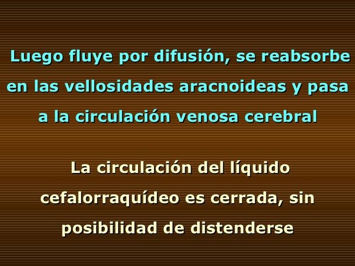 Luego fluye por difusión, se reabsorbe en las vellosidades aracnoideas y pasa a la circulación venosa cerebral La circulac...