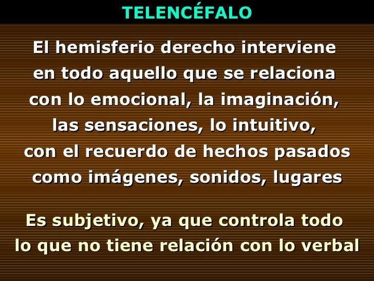 TELENCÉFALO El hemisferio derecho interviene  en todo aquello que se relaciona  con lo emocional, la imaginación,  las sen...