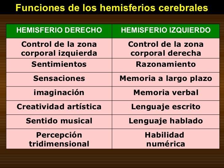 Funciones de los hemisferios cerebrales Habilidad  numérica Percepción tridimensional Lenguaje hablado Sentido musical Len...