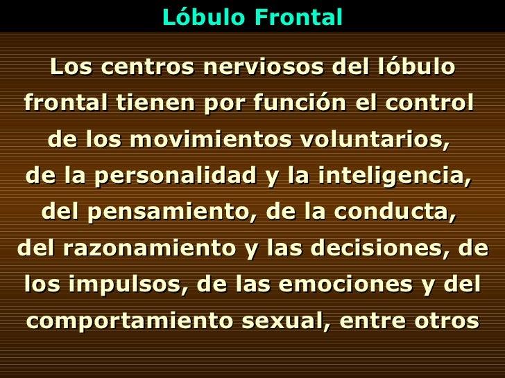 Lóbulo Frontal Los centros nerviosos del lóbulo frontal tienen por función el control  de los movimientos voluntarios,  de...