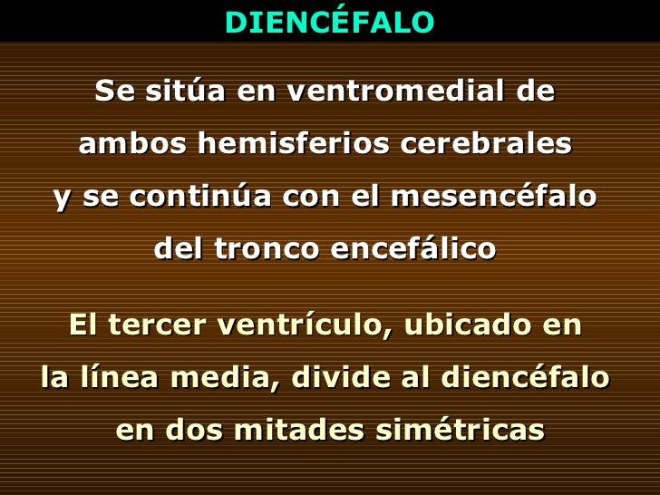 DIENCÉFALO Se sitúa en ventromedial de  ambos hemisferios cerebrales  y se continúa con el mesencéfalo  del tronco encefál...