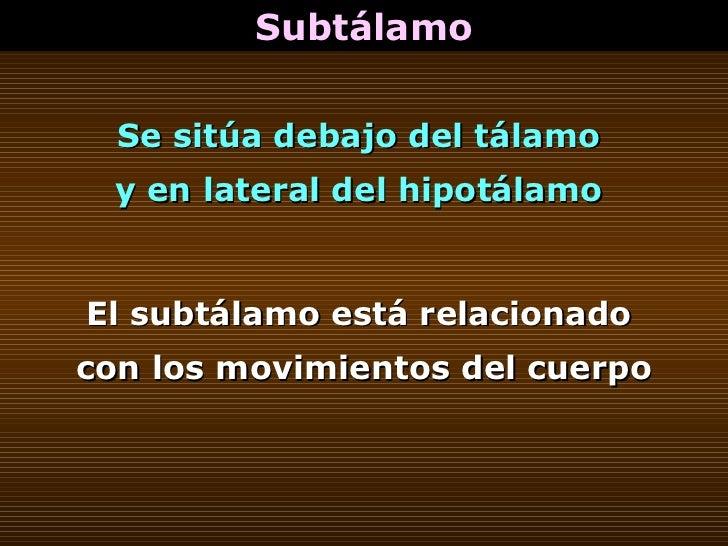 Subtálamo Se sitúa debajo del tálamo  y en lateral del hipotálamo  El subtálamo está relacionado  con los movimientos del ...