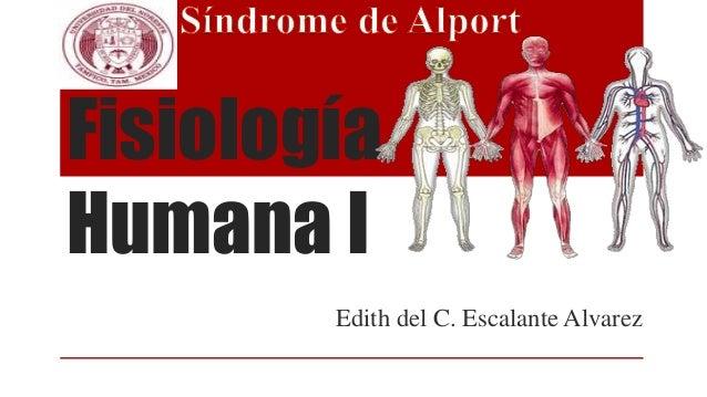 Fisiología Humana I Edith del C. Escalante Alvarez