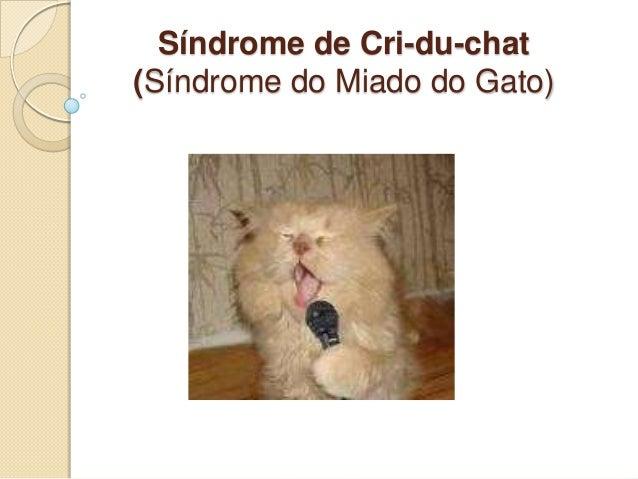 Síndrome de Cri-du-chat (Síndrome do Miado do Gato)