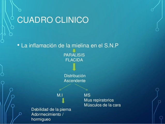 La várice varicosa a la cirrosis el hígado