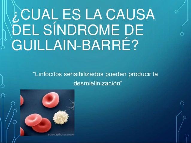 sindrome de guillain barre pdf
