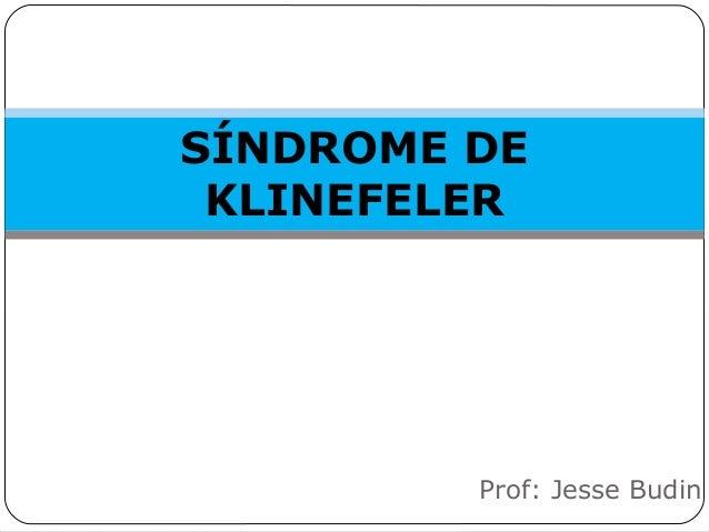 SÍNDROME DE KLINEFELER Prof: Jesse Budin