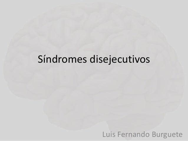 Síndromes disejecutivos  Luis Fernando Burguete