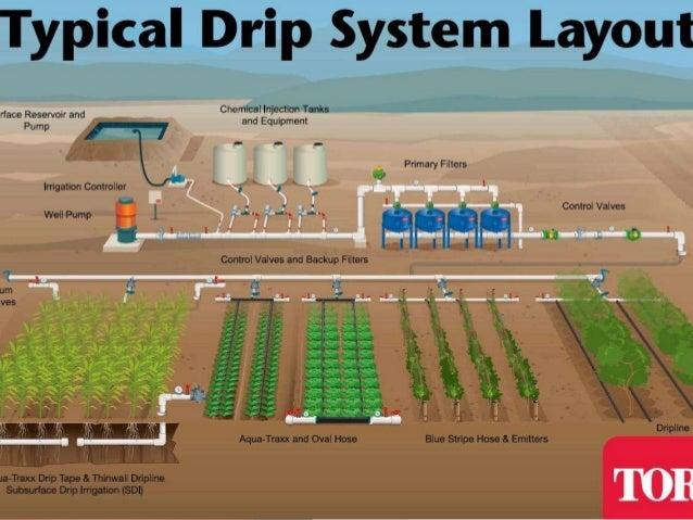 fertigation through drip irrigation using embedded system