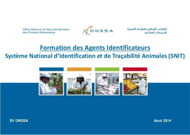 Formation des Agents Identificateurs Système National d'Identification et de Traçabilité Animales (SNIT) SV ONSSA Aout 2014